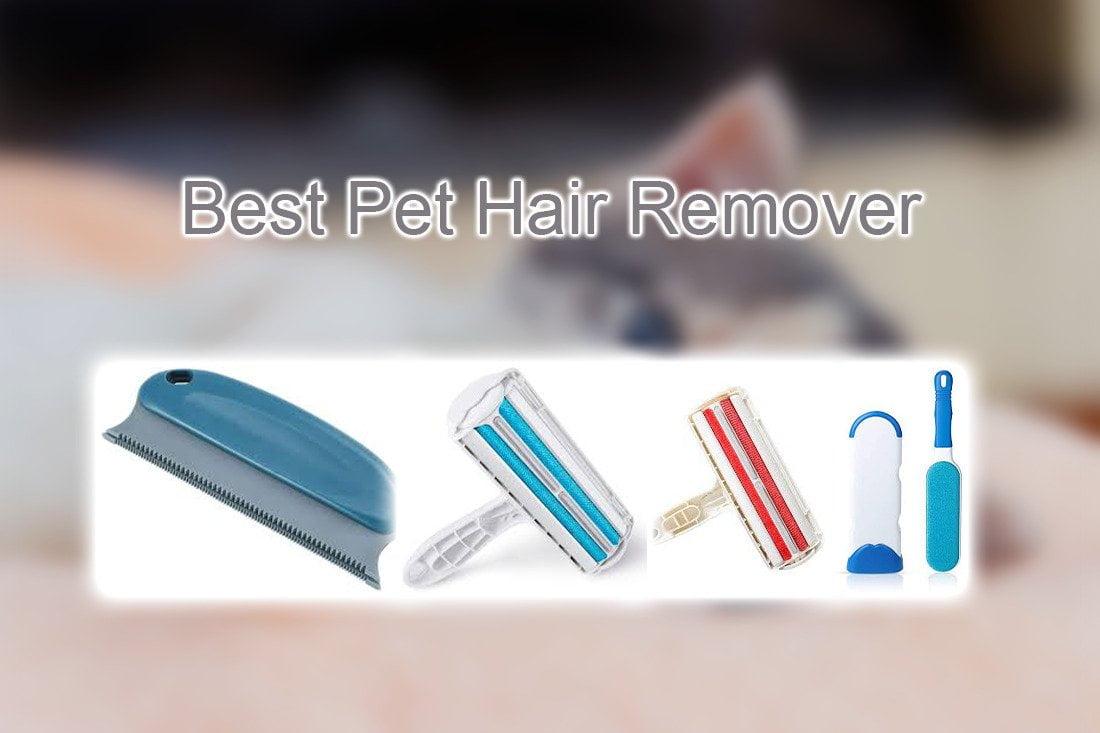 Best Pet Hair Remover Pet Lover Blog